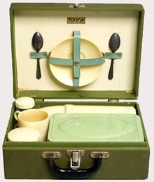 picnic-case