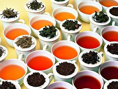 Assam Tea tasting_thumb[2]