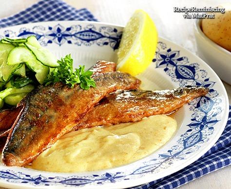 Stekt Makrell med Rømmesaus