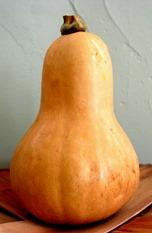 butternut-squash (1)