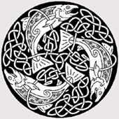 Knot_Salmon