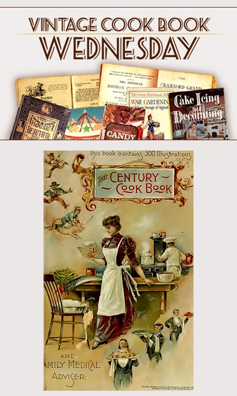 The Century Cook Book & Family Medical Adviser from 1893 in PDF